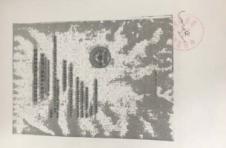 震旦ADC223机器打印图片满版底灰